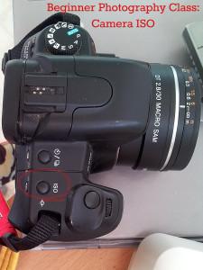 Beginner Photography Class: Camera ISO