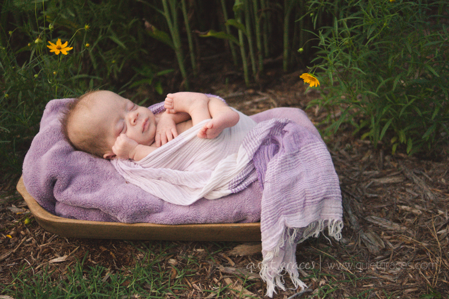 Pure Simple Outdoor Baby - Greenville SC Newborn Photography-16