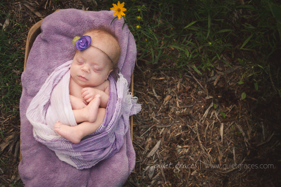 Pure Simple Outdoor Baby - Greenville SC Newborn Photography-19