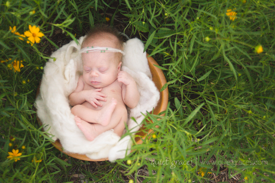 Pure Simple Outdoor Baby - Greenville SC Newborn Photography-3