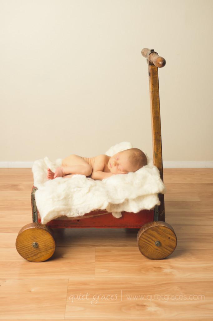 Simple Organic Greenville SC Newborn Photography (7)