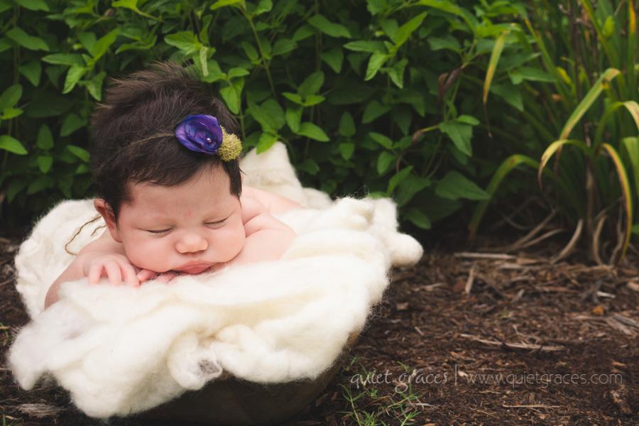 Greenville SC Newborn Girl Photography Outside