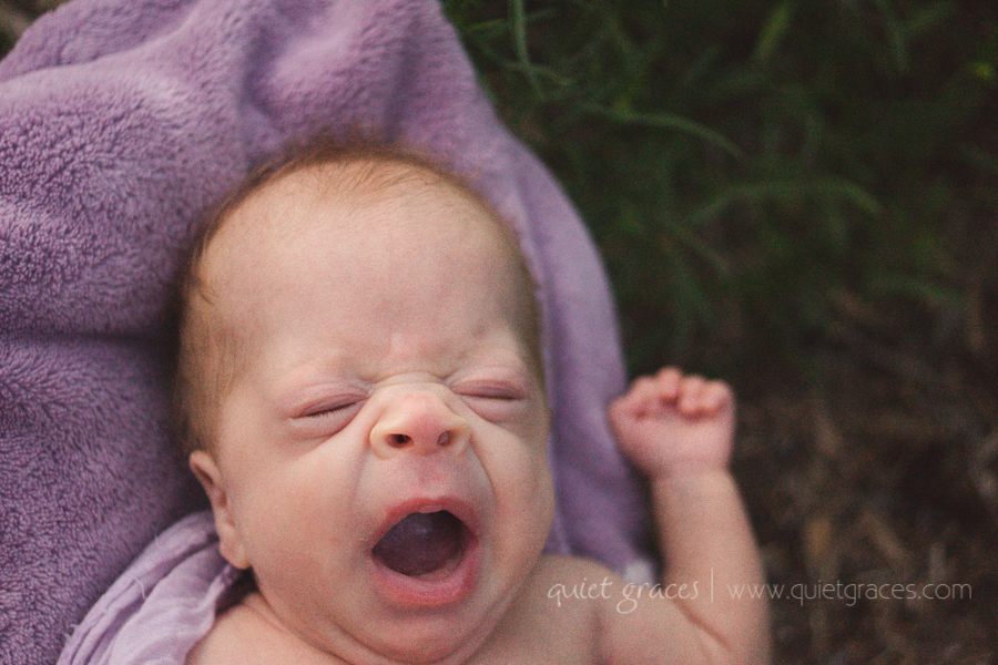 Pure Simple Outdoor - Greenville SC Newborn Photography-21