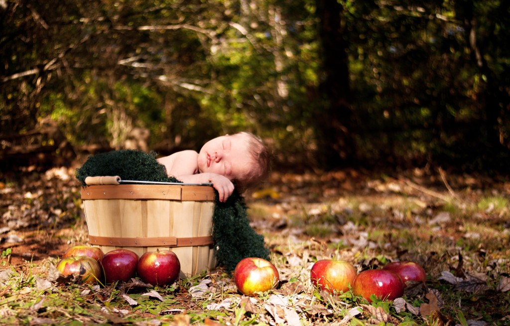 Outdoor newborn photography in an apple orchard greenville sc