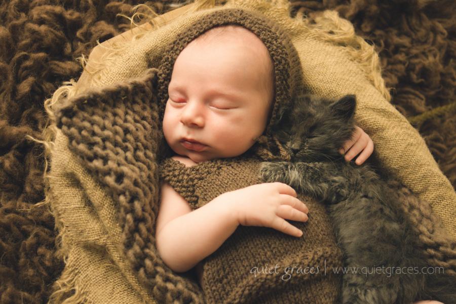 Newborn Boy with Baby Kitten Greenville SC