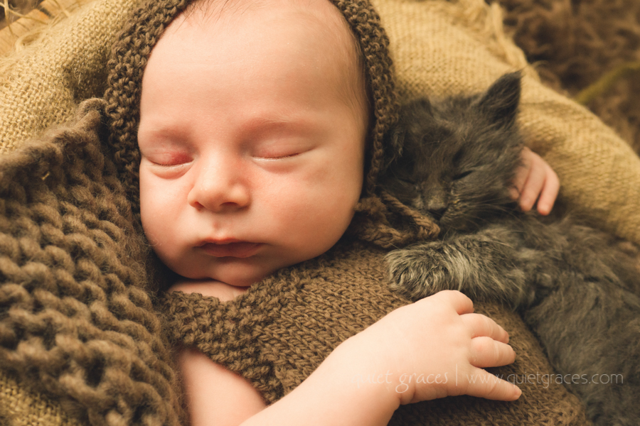Sweet Baby Boy with His Kitten Greenville SC Baby Photographer