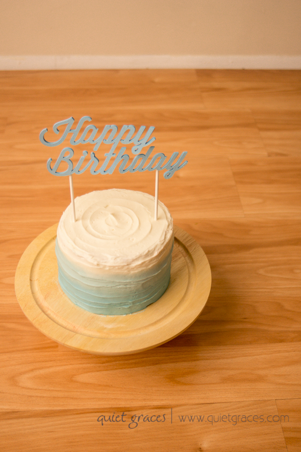 One year Cake smash photographer simpsonville sc