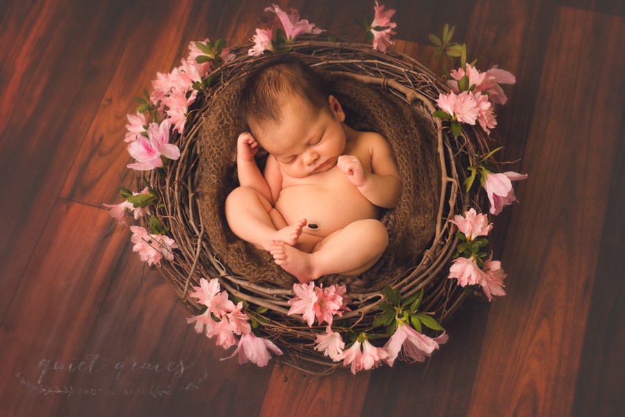 Natural Newborn Baby Girl Pictures Greenville SC