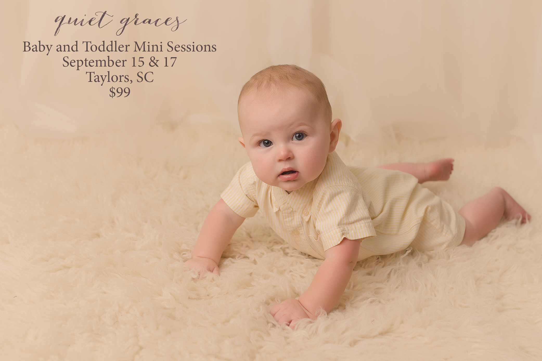 Baby Mini Sessions