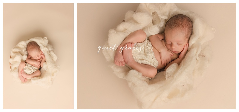 Greenville SC Natural Newborn Pictures