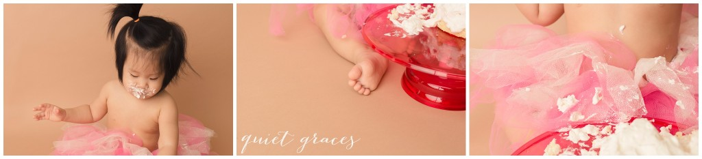 Details from a Cake Smash Session Greer SC