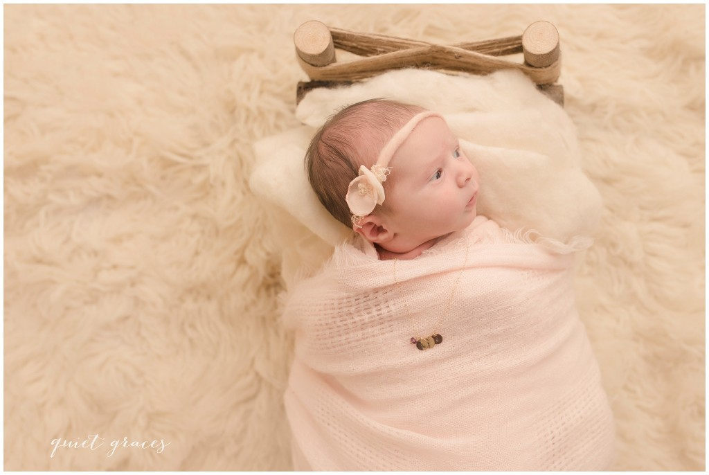 Newborn Baby Photographer with Props Greenville SC