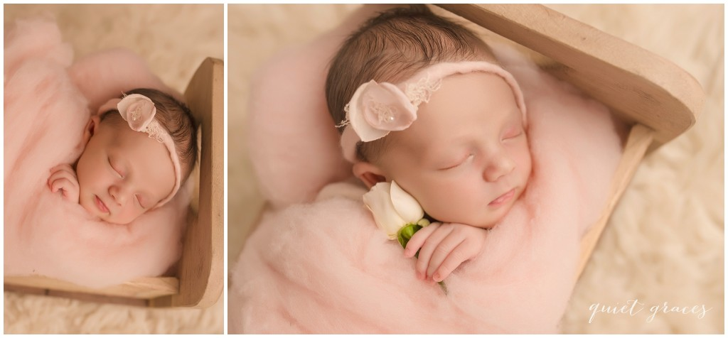 Newborn Baby Sleeping in a Little Bed Photographer Greenville SC