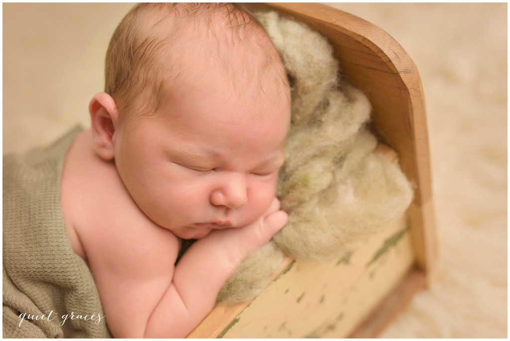 Newborn Baby Boy in a Little Bed Pictures Greer SC