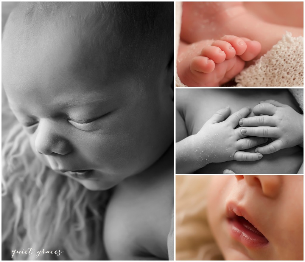 Baby Details photography Greenville SC
