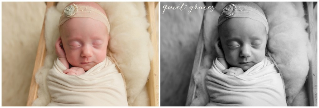 Preemie Newborn Photographer Greenville SC