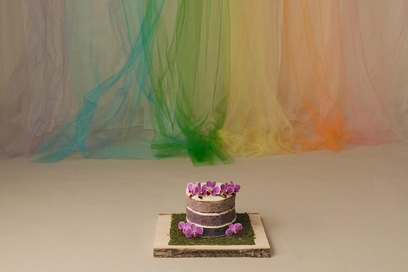 Unicorn Rainbow Cake Smash Photos Greenville SC