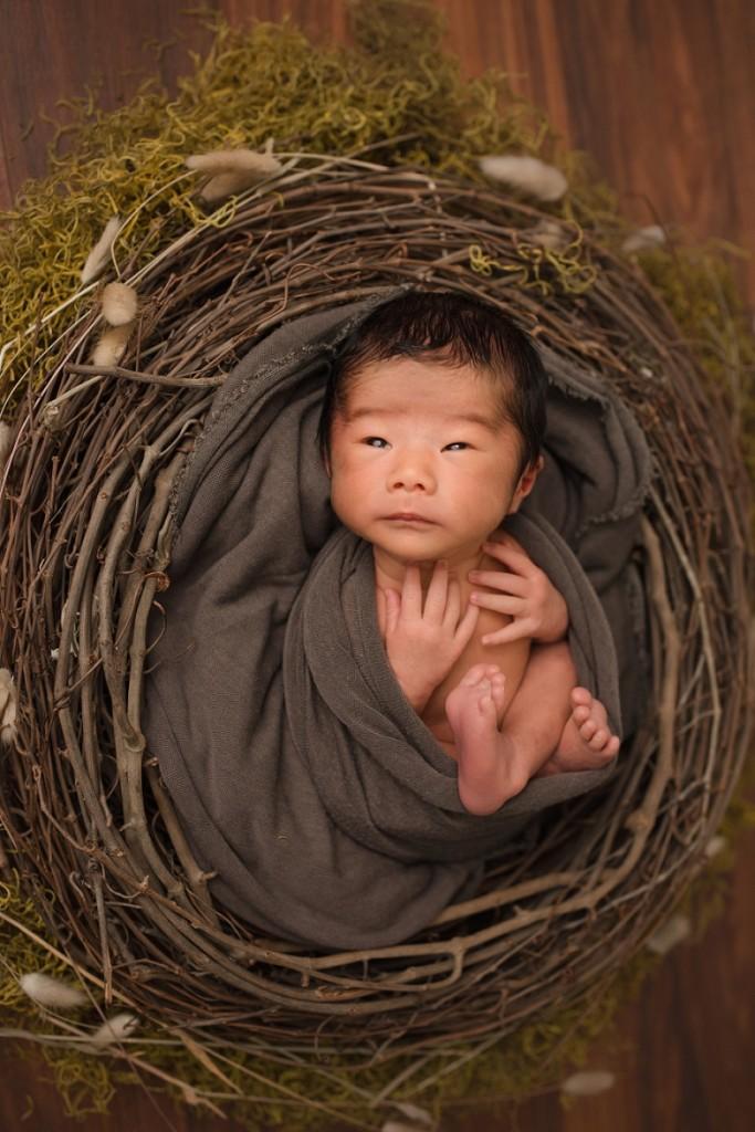 Newborn Baby Photographer Greer SC