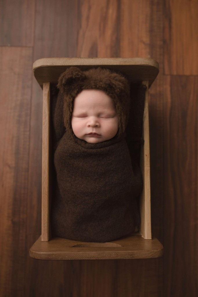 Baby Dressed as a Bear Greenville SC