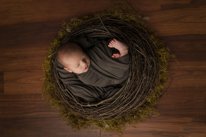 Greer SC Newborn Photographer