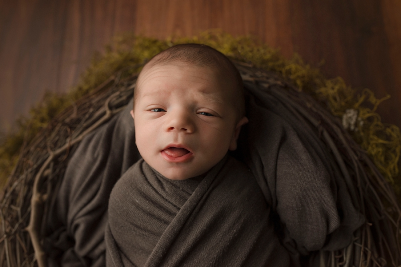 Natural Newborn Pictures baby in Nest Greenville SC