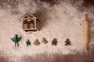 Greenville SC Gingerbread Photos