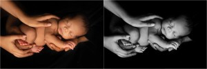 Classic Timeless Simple Newborn Photography Spartanburg SC