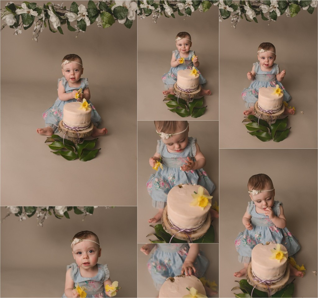 Greenville SC Cake Smash Photographer One Year Old