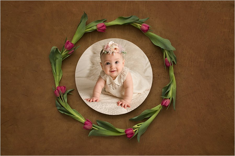 Six Month Baby Pictures Greenville SC
