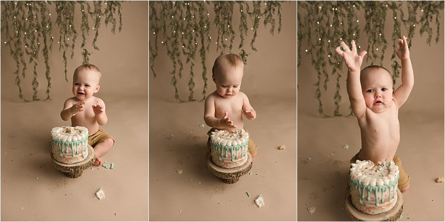 Simple Fun Woodland Themed Cake Smash Pictures Simpsonville SC