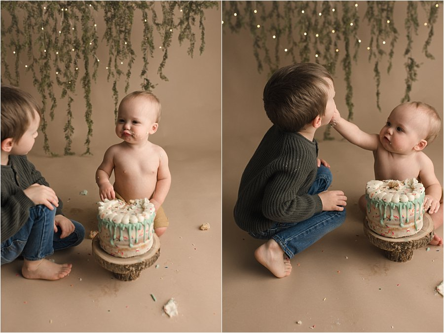 Simple Fun Woodland Themed Cake Smash Pictures Travelers Rest SC