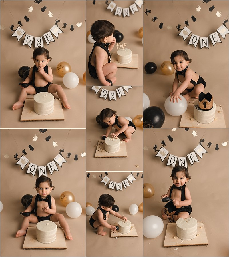 Greer SC Timeless One Year old Pictures Wild Things Theme