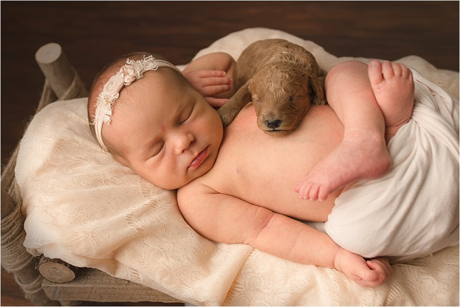 Newborn Baby and Puppies Greenville SC: Doodles Making a Difference