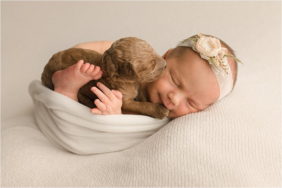 Newborn baby gets kisses from a newborn puppy in this image from Quiet Graces Photography and Doodle Alliance