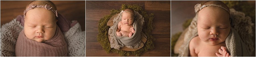 Newborn Photography with natural elements Greenville SC